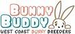 Bunny Buddy – West Coast Netherlands Dwarf Bunny Breeders